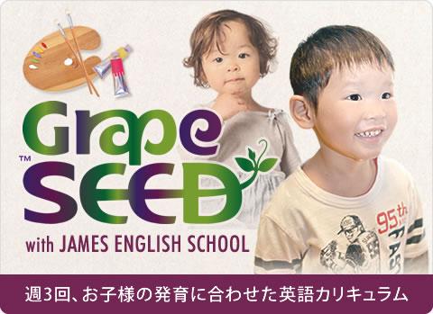 GRAPESHEED 週3回、お子様の発育に合わせた英語カリキュラム